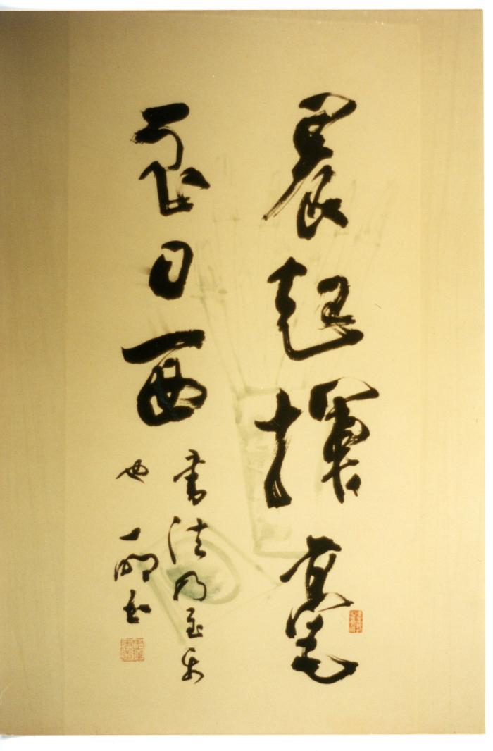 Photograph: Chinese calligraphy